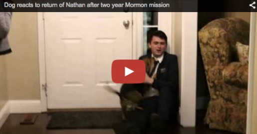 Dog Welcomes Missionary Home After 2 Years