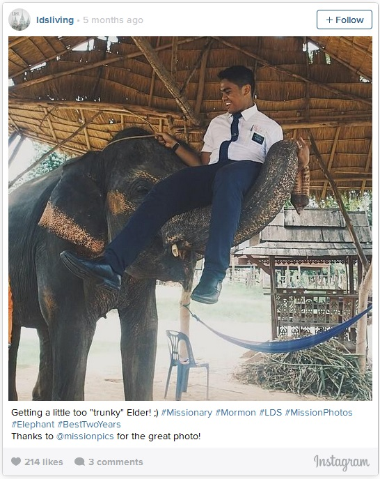 Elephant picking up Mormon Missionary with trunk